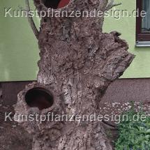 010_baumstumpf_zum_bepflanzen