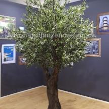 041 dekobaum olive premium , h.400cm,dm.250cm