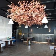042 schwebende kirschblütenbaumkrone 250x500cm